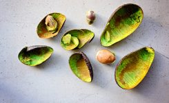 Avo Shaping, Without The Waste!